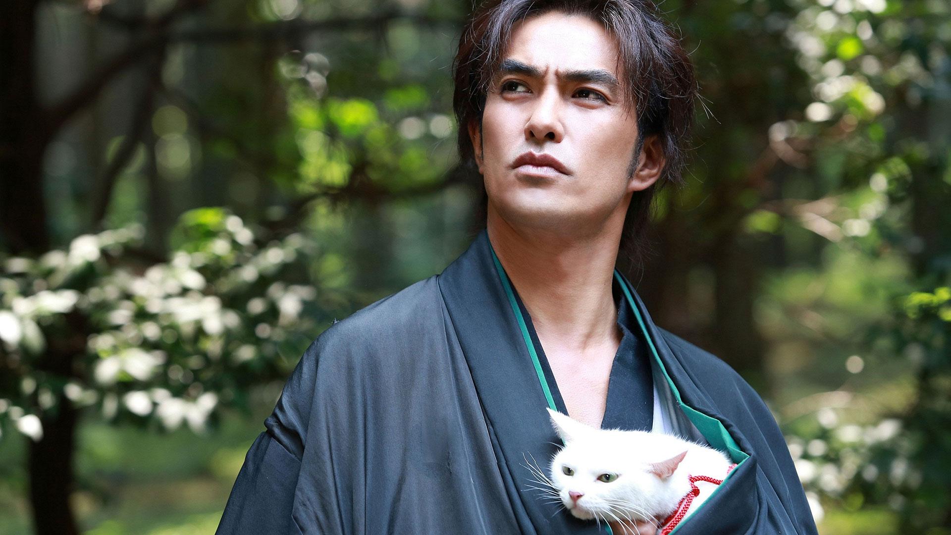 Samurai Cat banner image